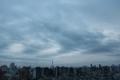 [空][雲][東京][朝](2020-12-28 07:01)