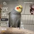 [Instaweather]WeatherShot(2020-12-29)