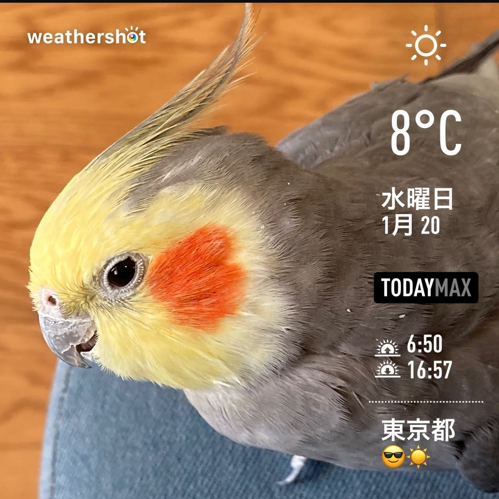 WeatherShot(2021-01-20)