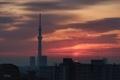 [日の出][空][雲][東京][朝][大気光学現象]太陽柱(2021-01-22 06:49)