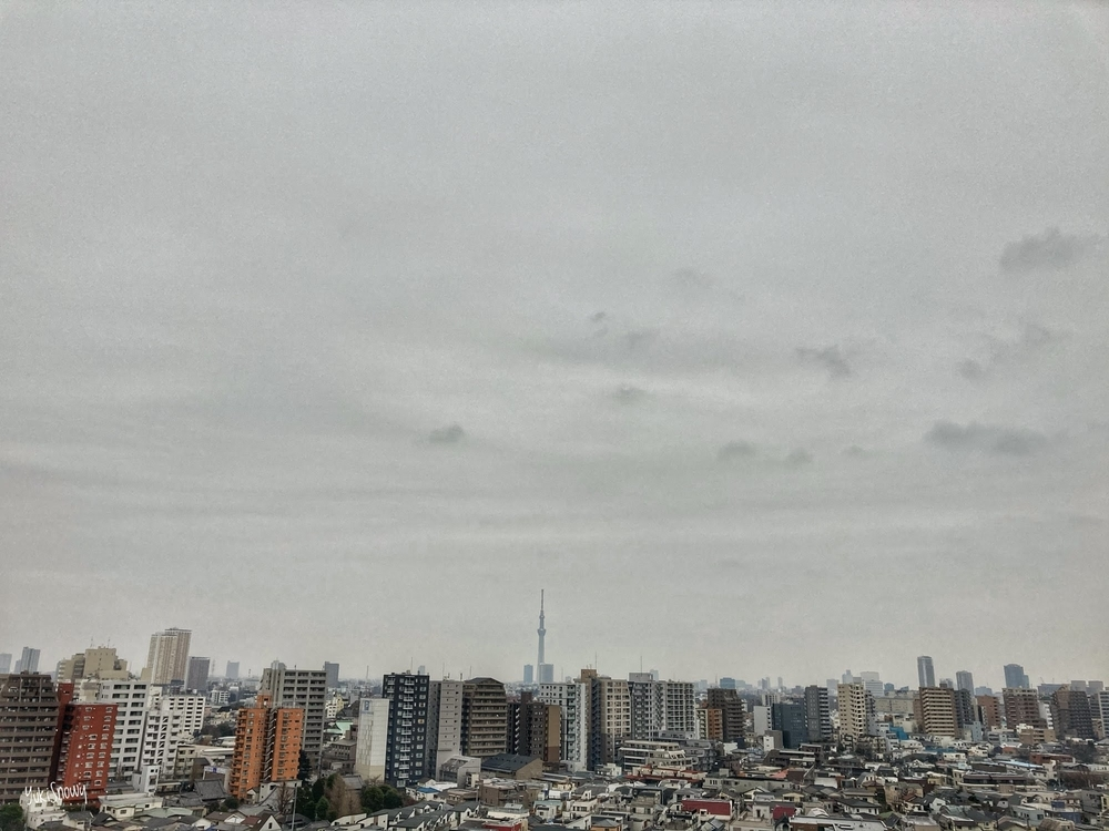 (2021-01-23 08:12)