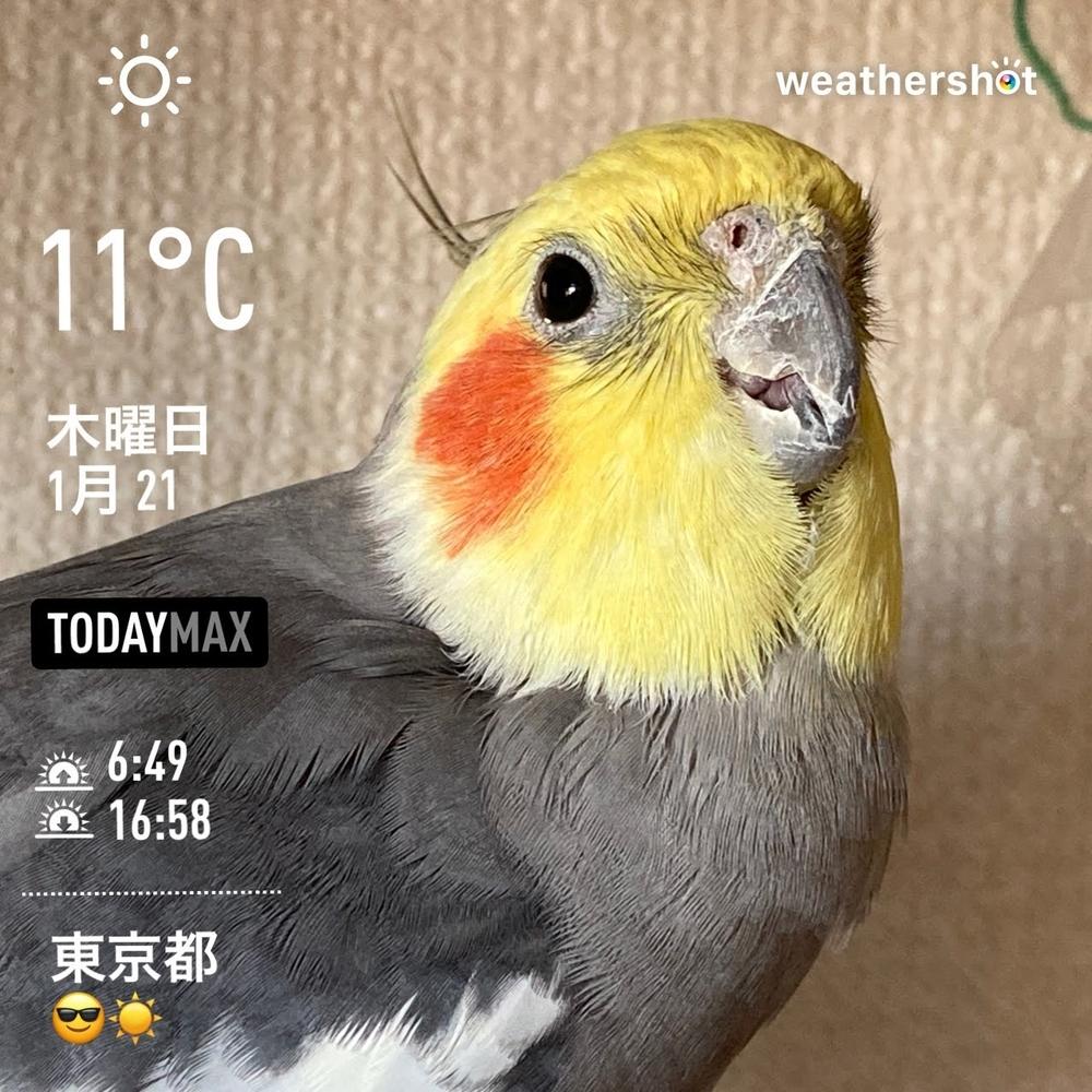 WeatherShot(2021-01-21)
