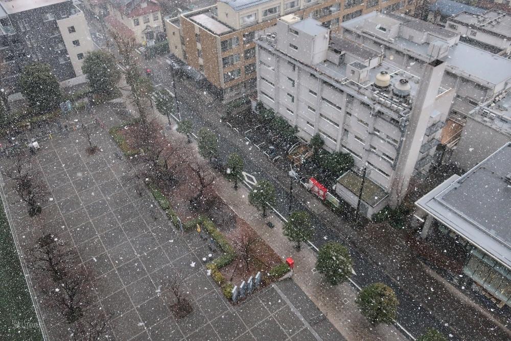 雪(2021-01-28 15:27)