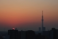 [日の出][空][雲][東京][朝](2021-02-22 06:23)