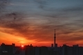 [日の出][空][雲][東京][朝](2021-02-25 06:16)