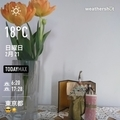 [Instaweather]WeatherShot(2021-02-21)