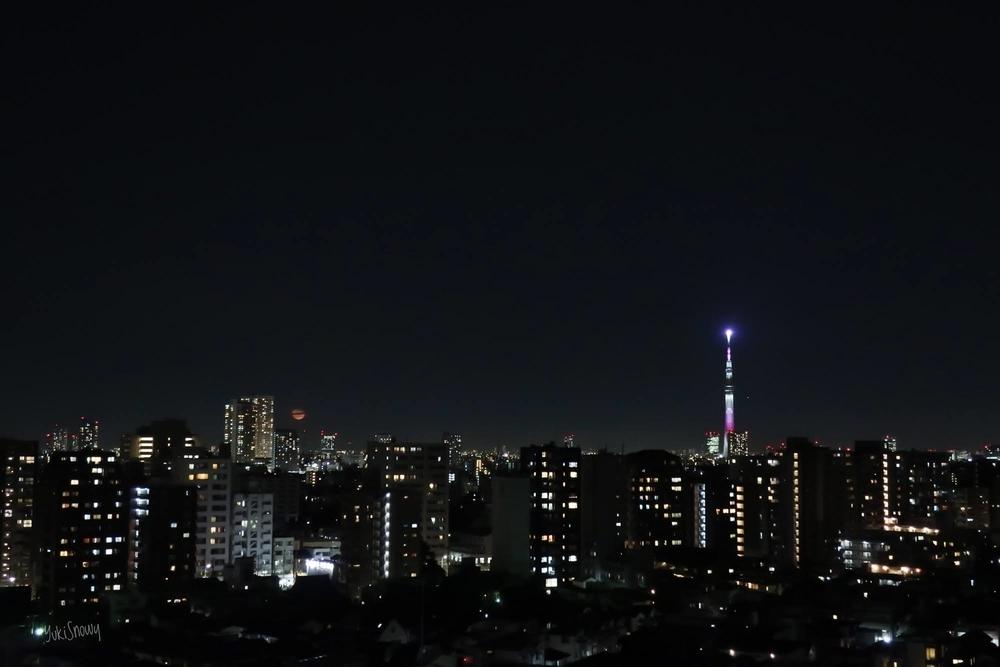 月齢17.6 居待ち月(2021-03-01 19:55)