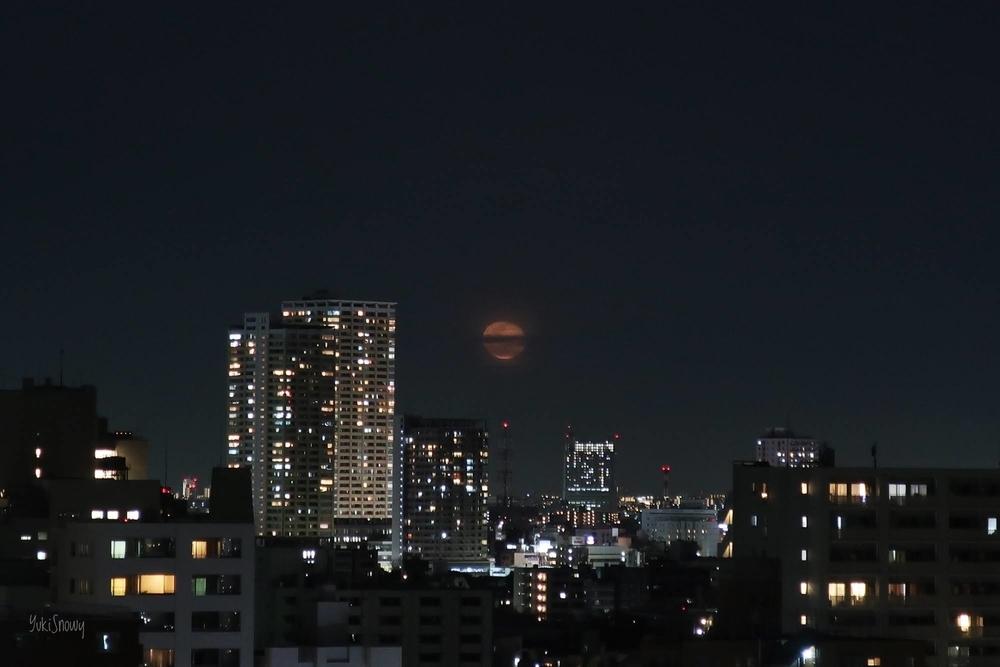 月齢17.6 居待ち月(2021-03-01 19:56)