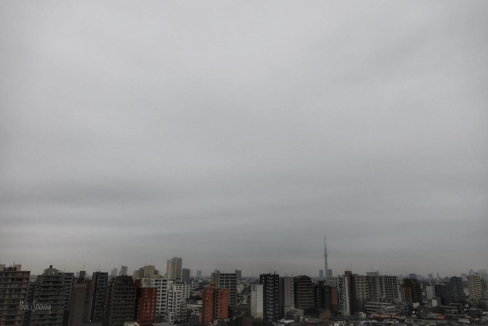 (2021-03-08 06:48)