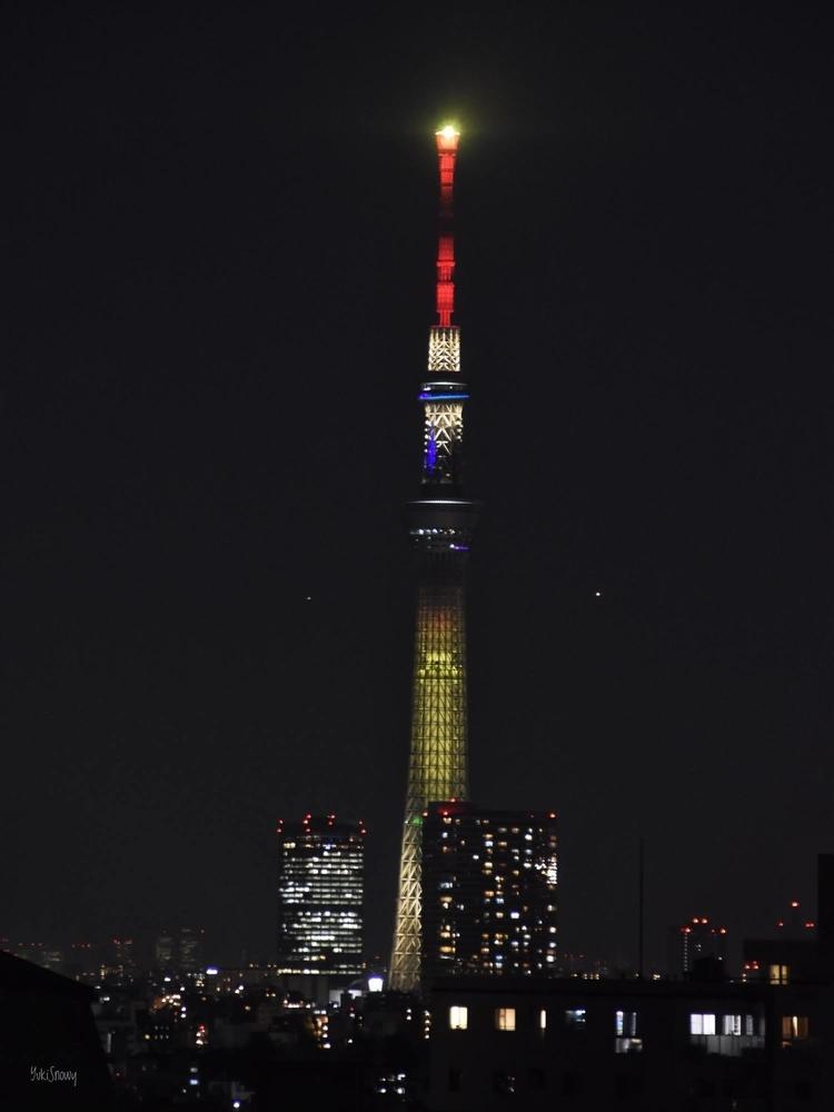 明花(2021-03-11)