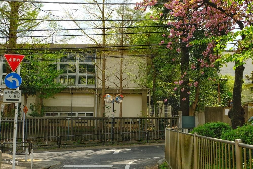 大塚3丁目窪町公園横から筑波大付属小方面(2021-04-03)