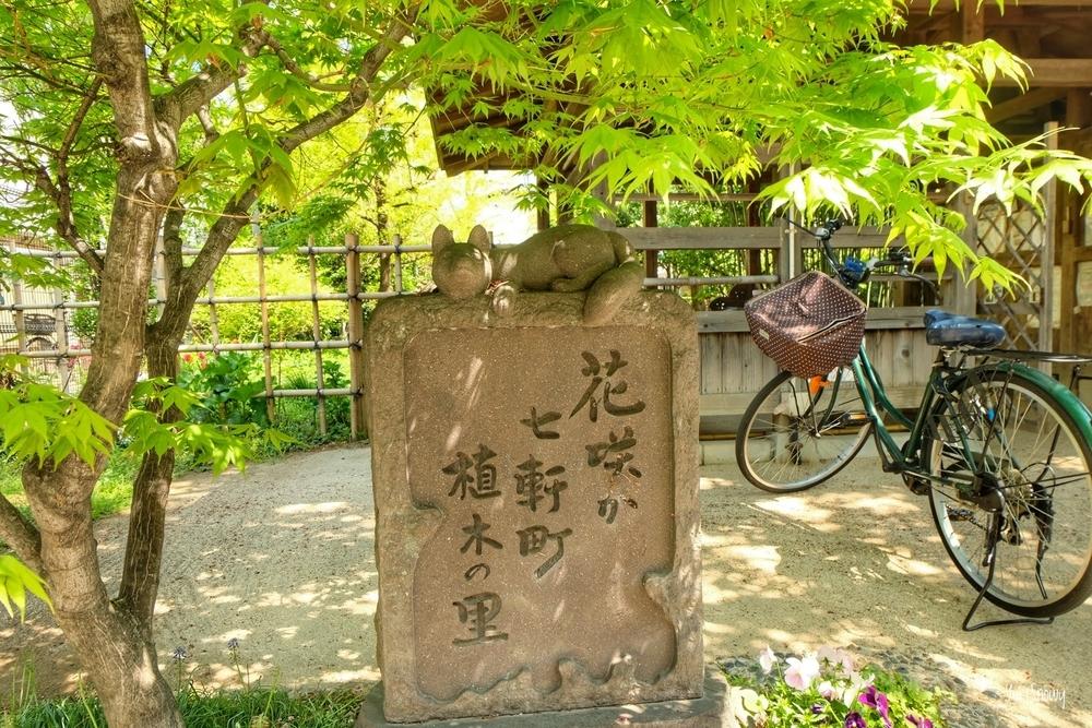 花咲か七軒町植木の里(2021-04-11)