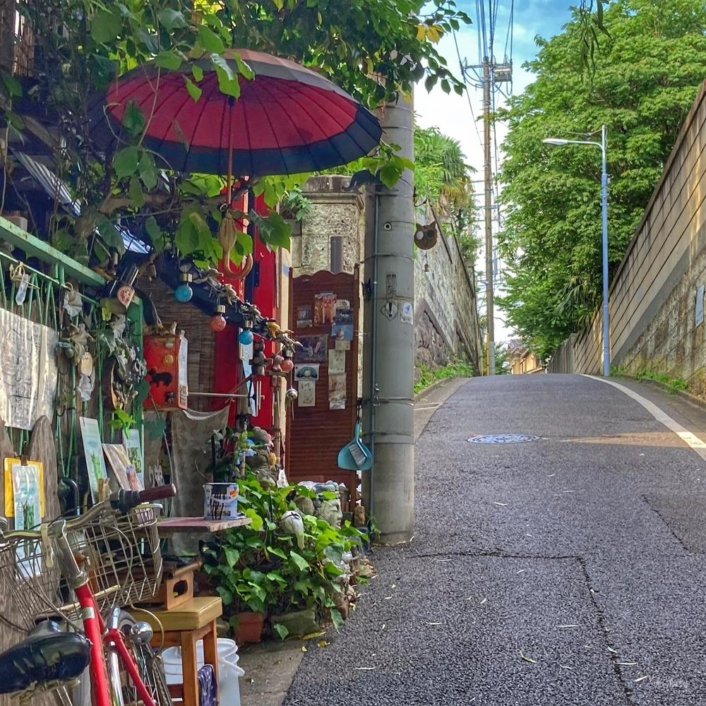 三浦坂(2021-06-18)