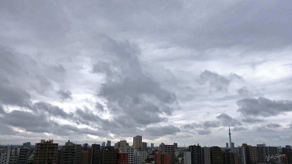 (2021-07-08 06:14)