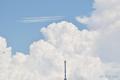 [空][雲][東京]ブルーインパルス(2021-07-23 12:49)