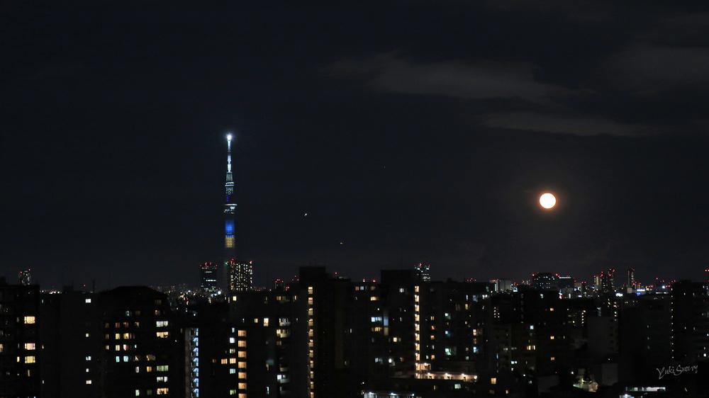 (2021-07-24 19:41)