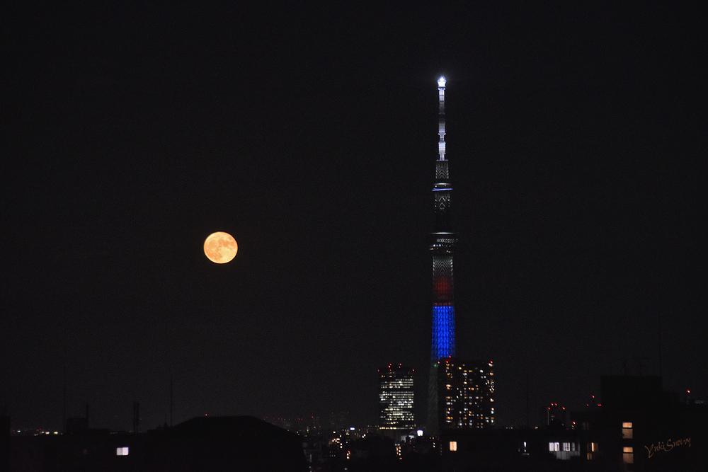 (2021-08-23 19:22)