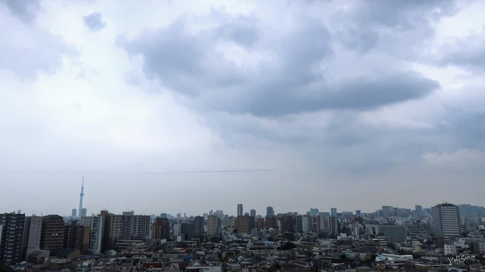 ブルーインパルス(2021-08-24 14:08)
