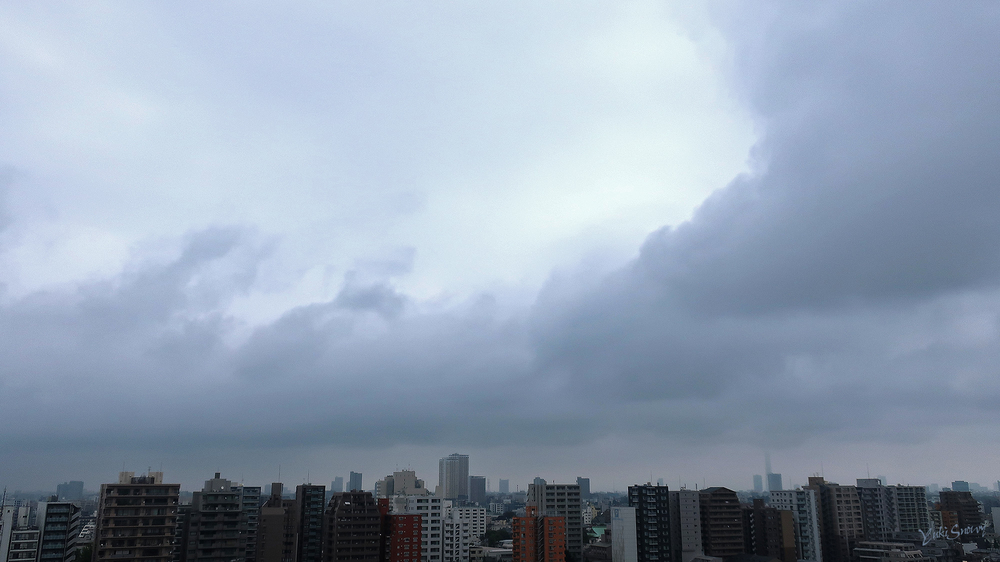 (2021-09-12 08:19)