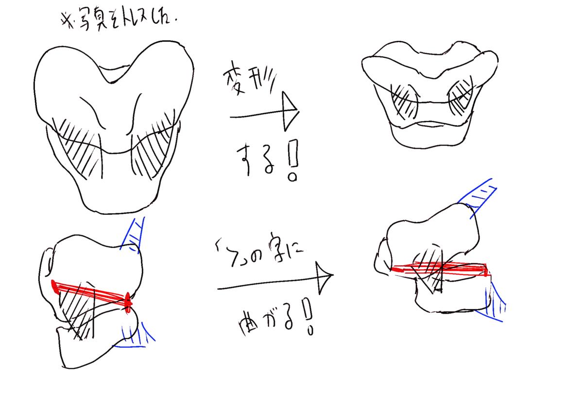喉頭の変化