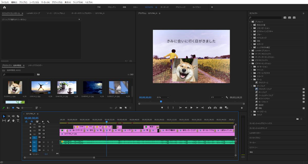 Premiere Pro 2020のキャプチャー画像:Soseki21ブログ