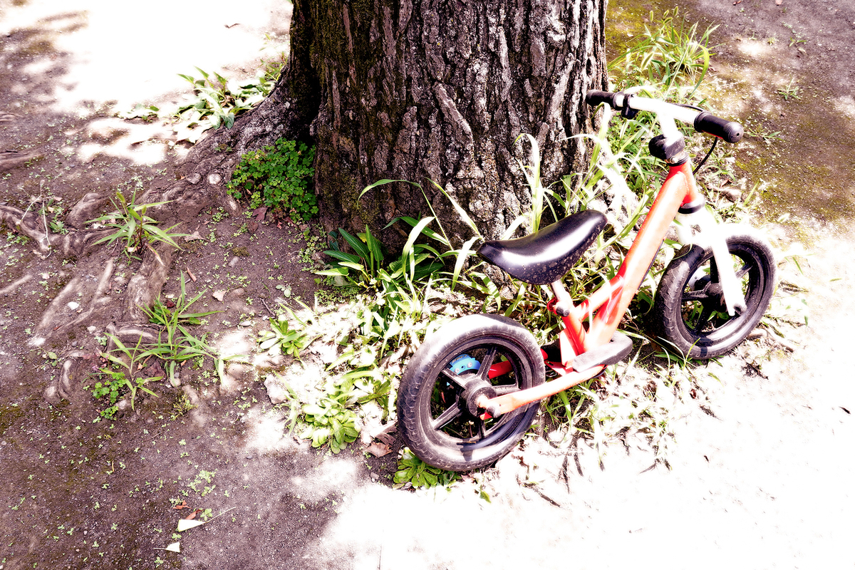 公園と自転車:Soseki21ブログ