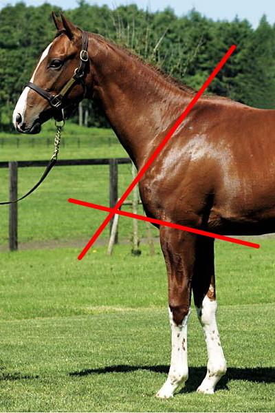 f:id:Southend:20100809171039j:image:w200