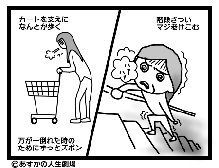 画像:階段を登れない、カートに掴まって歩く