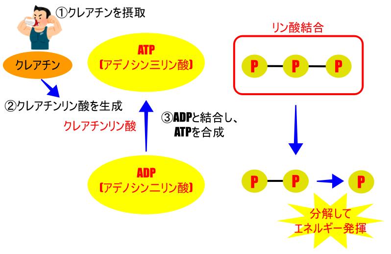 f:id:Sprint-e2-ky:20191017223846p:plain