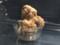 [ローソン][鶏から][黒こしょう甘辛だれ][4個税込み200円][304kcal]