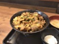 [すた丼屋][すたみなジャンカル丼][880円][肉増し][150円][(税込)]