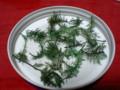 [針葉樹]葉っぱは何だか海藻のかほり
