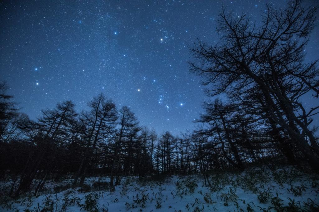 f:id:Starryheavens:20171224205513j:plain