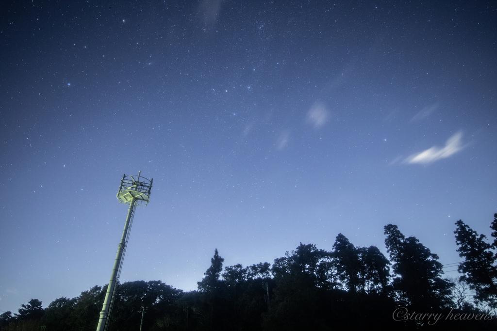 f:id:Starryheavens:20190112165653j:plain