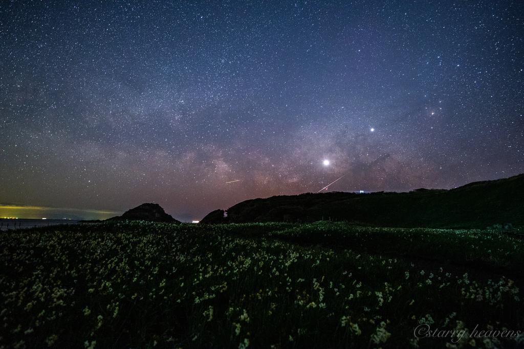 f:id:Starryheavens:20190221223527j:plain