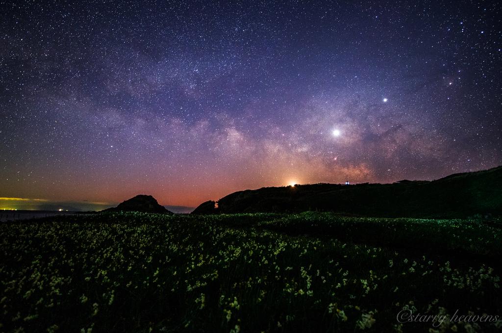 f:id:Starryheavens:20190221223740j:plain