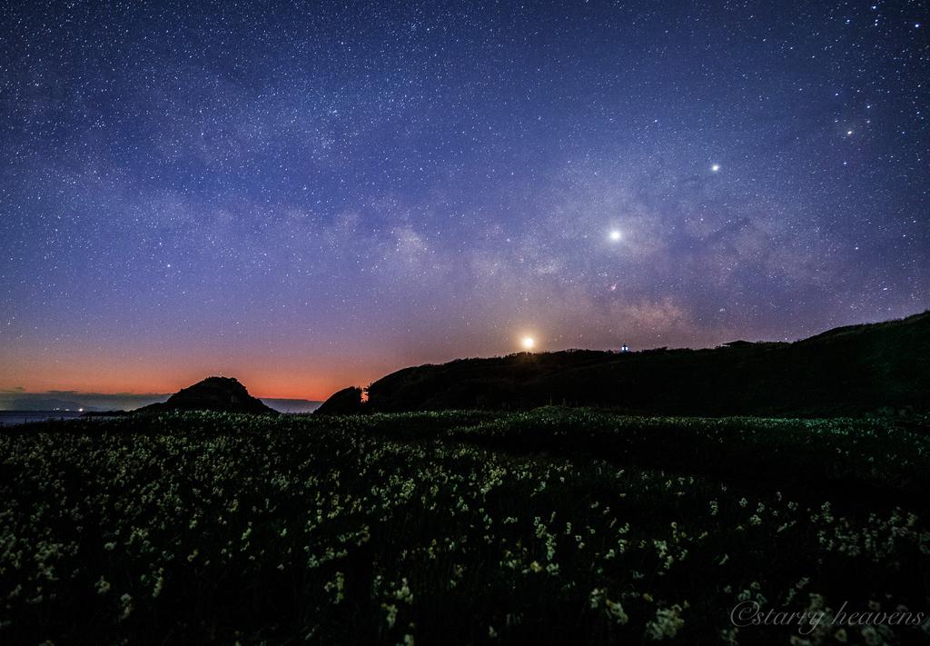 f:id:Starryheavens:20190221223840j:plain