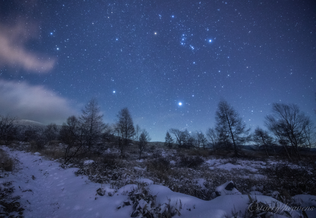 f:id:Starryheavens:20190310193124j:plain