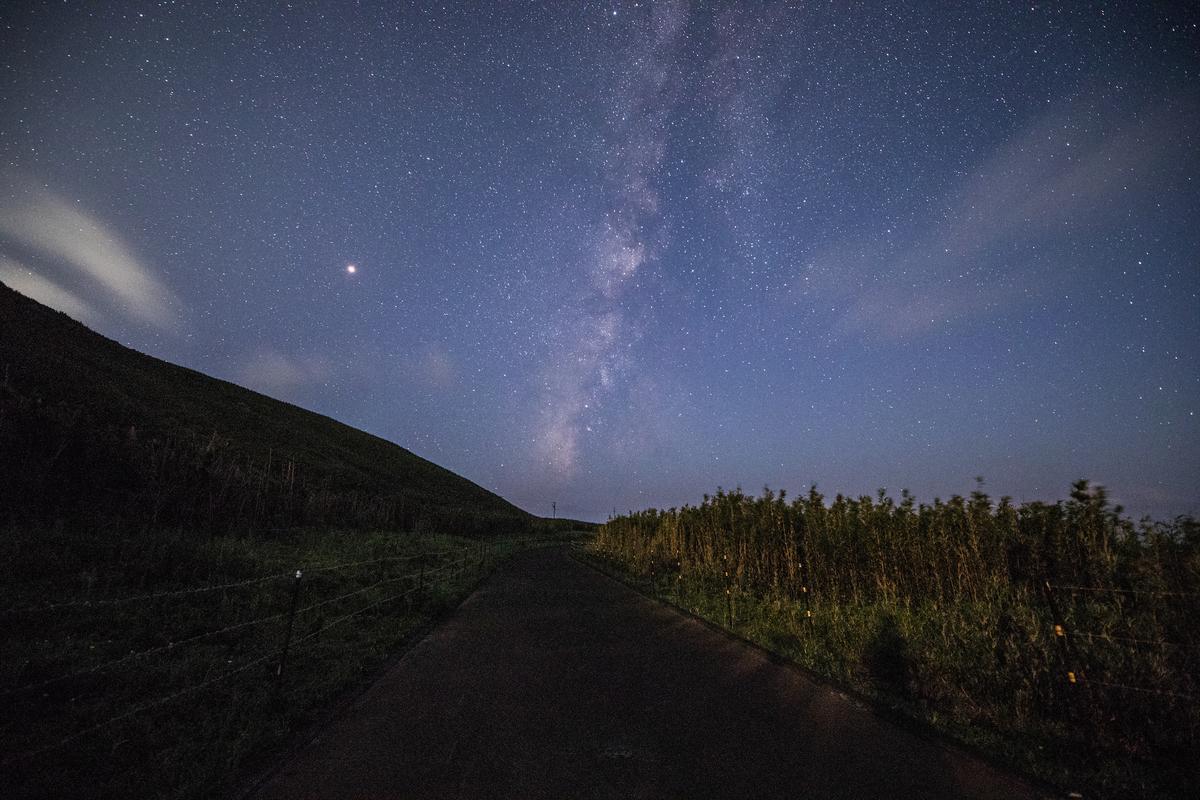 f:id:Starryheavens:20190321125812j:plain