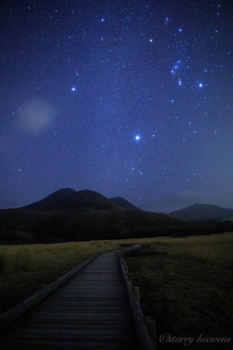 f:id:Starryheavens:20200222195252j:plain