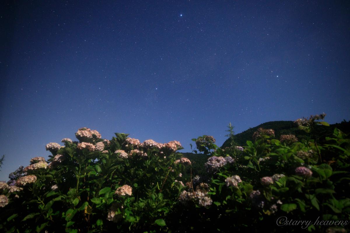 f:id:Starryheavens:20200702163602j:plain