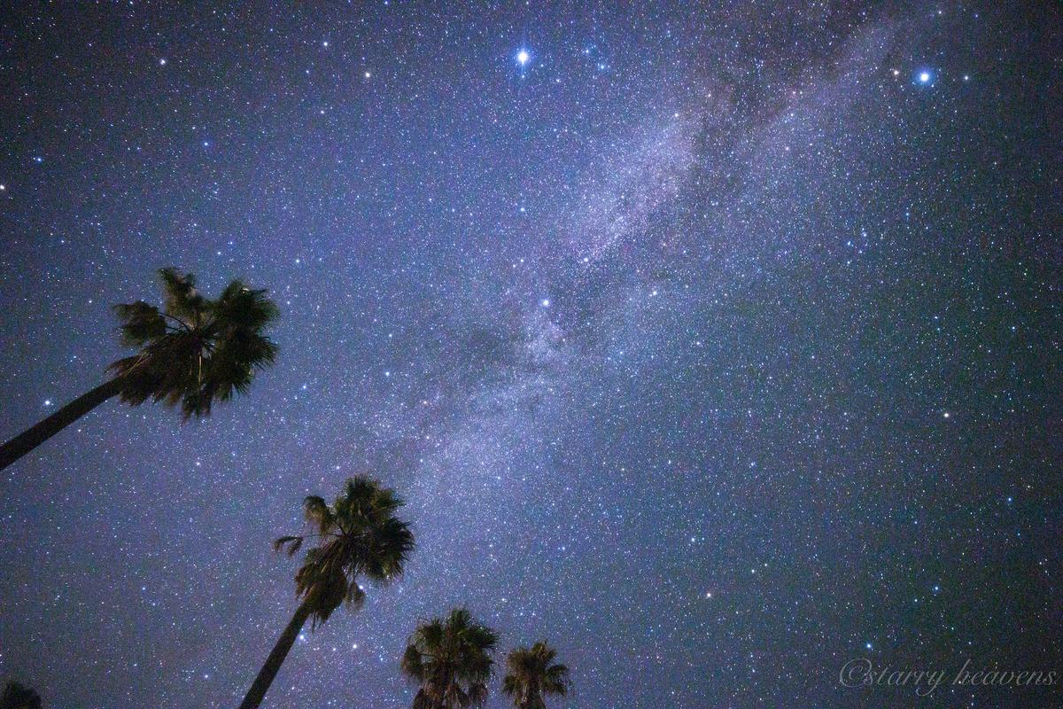 f:id:Starryheavens:20200829101852j:plain