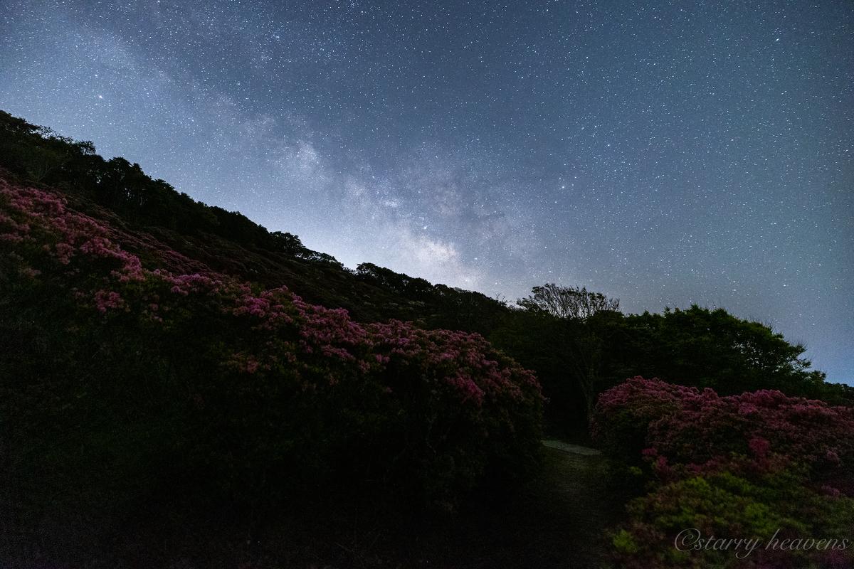 f:id:Starryheavens:20210412205353j:plain