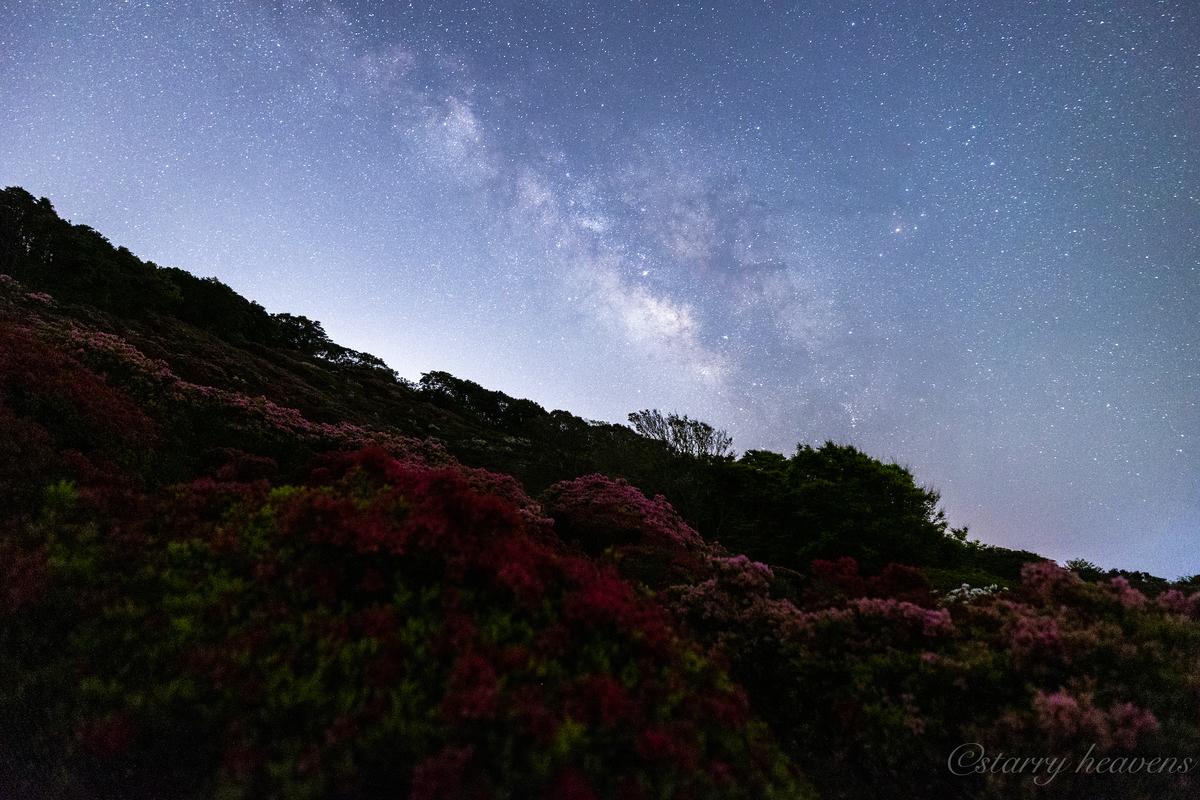 f:id:Starryheavens:20210412205359j:plain