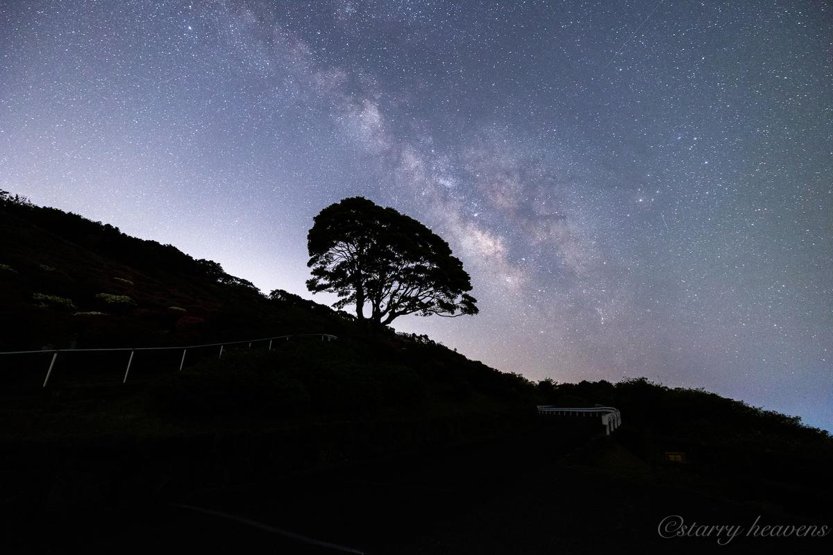 f:id:Starryheavens:20210412205422j:plain