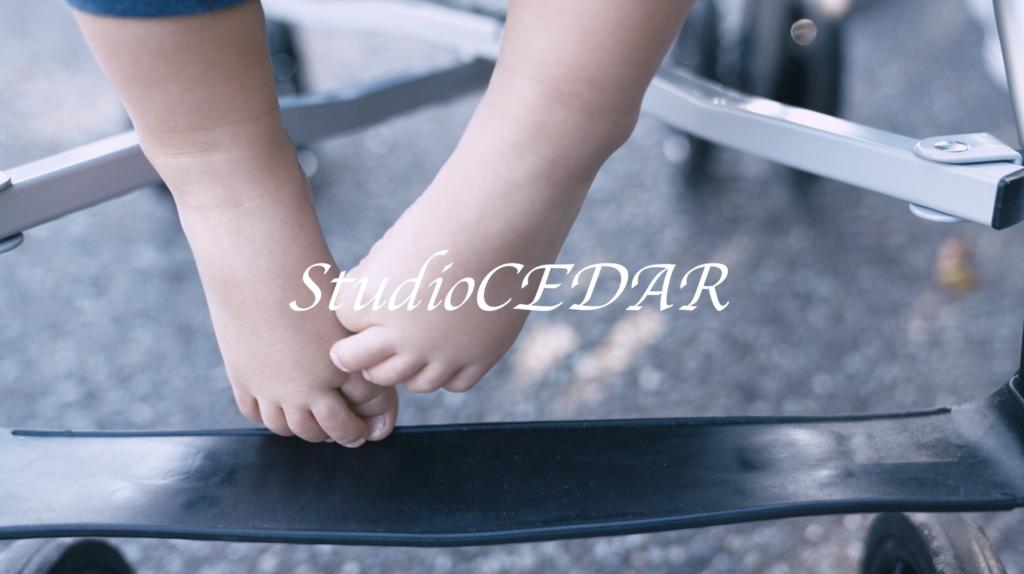 f:id:Studiocedarv:20190310122120p:plain