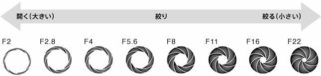f:id:Studiocedarv:20190507222109j:plain