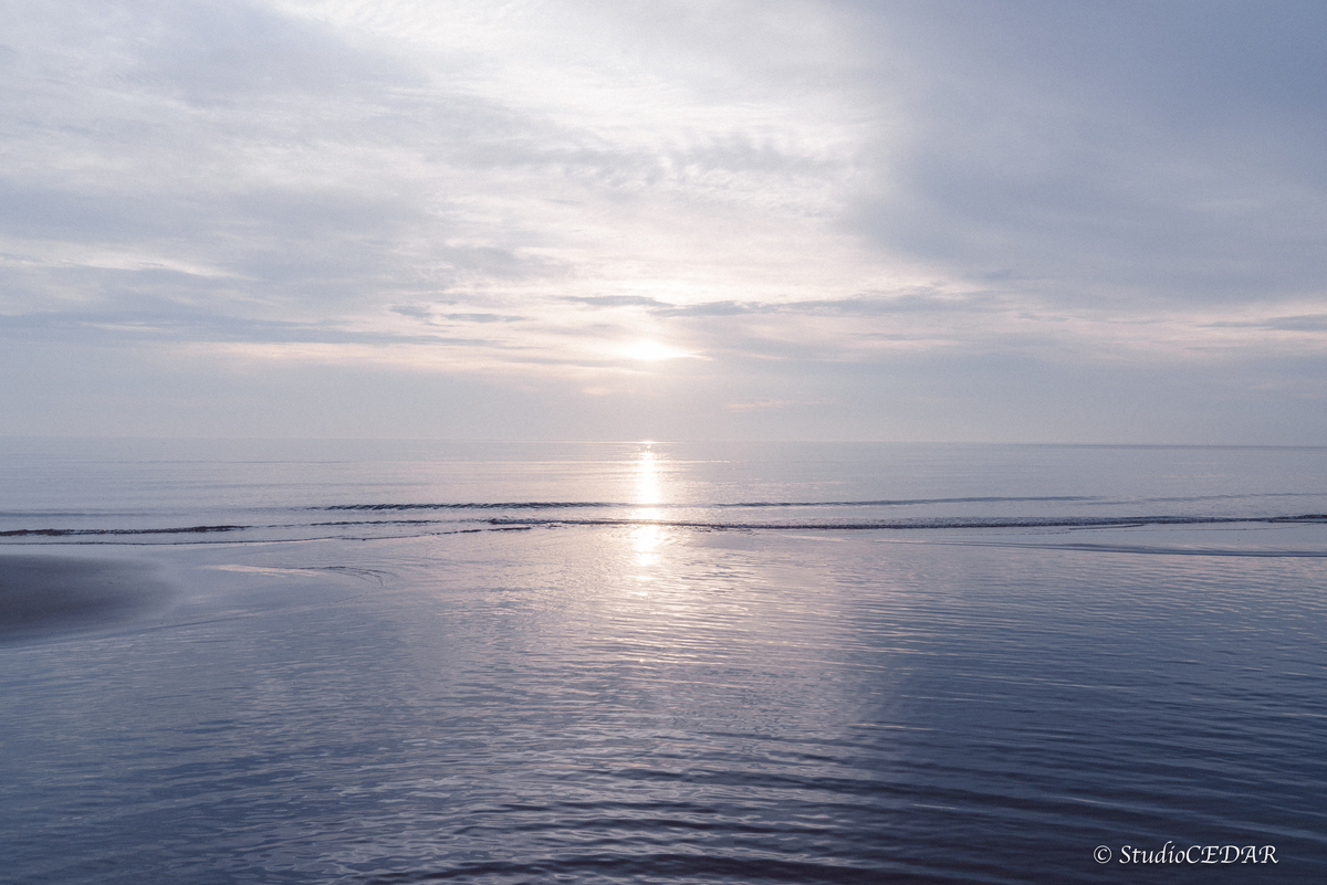 海 ポートレート