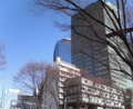 [街][木][建物]新宿