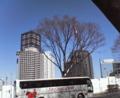 [街][木][自動車]新宿